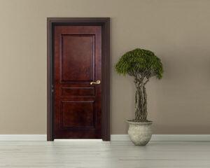 Veneer Moulded Panel Door at best price In Mumbai